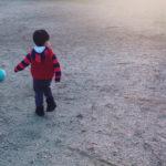 【2歳の子と遊ぼう!】おすすめのボールと選び方